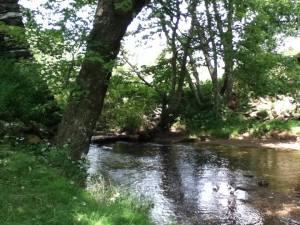 Langhorne Mill 5