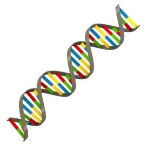 DNA relative