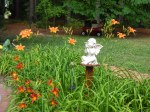 Daylilies surround my angel statue.